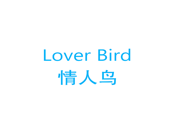 情人鸟 LOVER BIRD